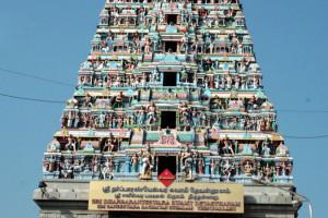 sani-temple